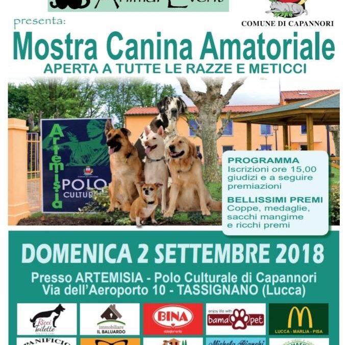 Domenica 2 settembre Mostra canina amatoriale al polo culturale Artémisia